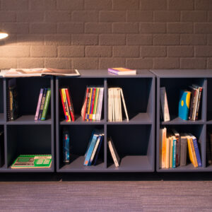 Library shelves with vintage books.